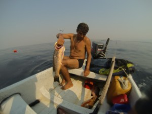 The Captain Cleaning a Pargo